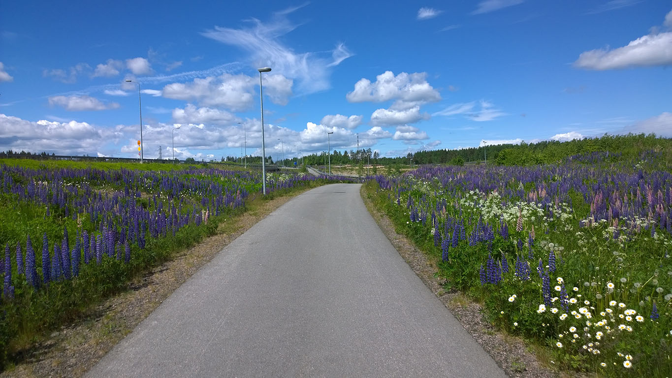 Bicycle Touring: Cycling in Finland - Image 2